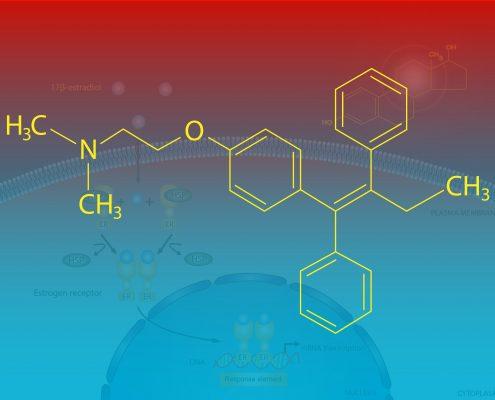 meme kanseri en önemli ilaçlardan biri tamoksifen